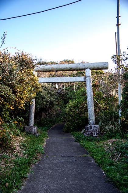 八幡岬公園60