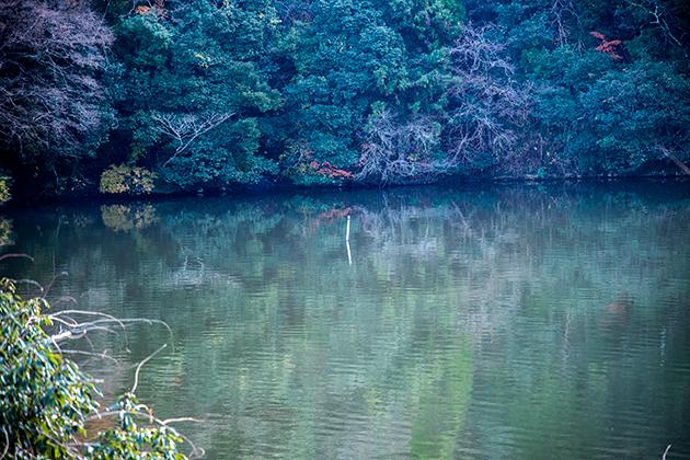 亀山湖38