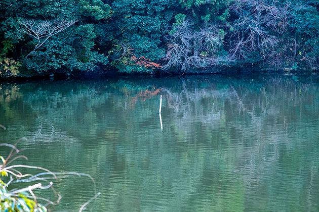 亀山湖39