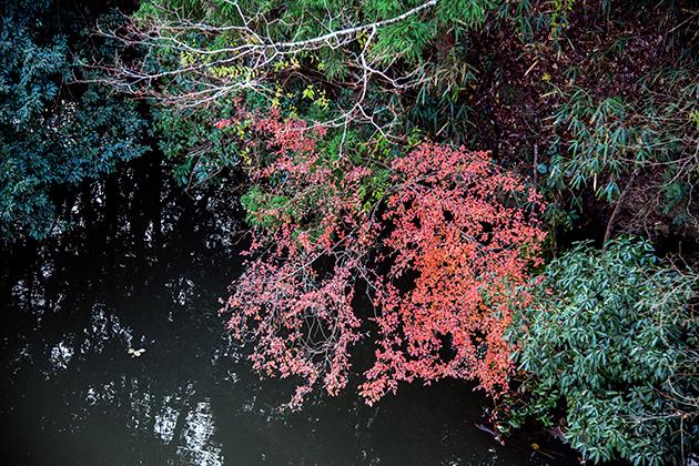 亀山湖41