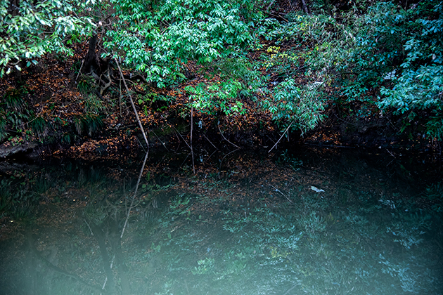 亀山湖48