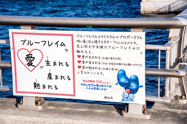 館山夕日桟橋11