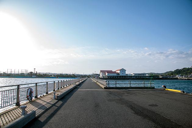 館山夕日桟橋12