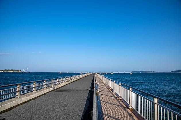 館山夕日桟橋25