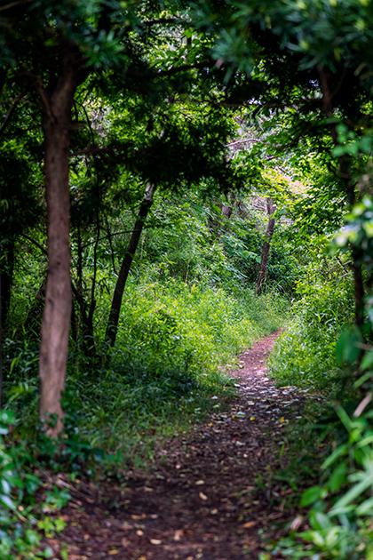 富津公園13