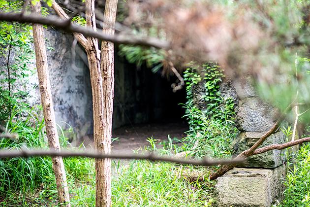 富津公園17