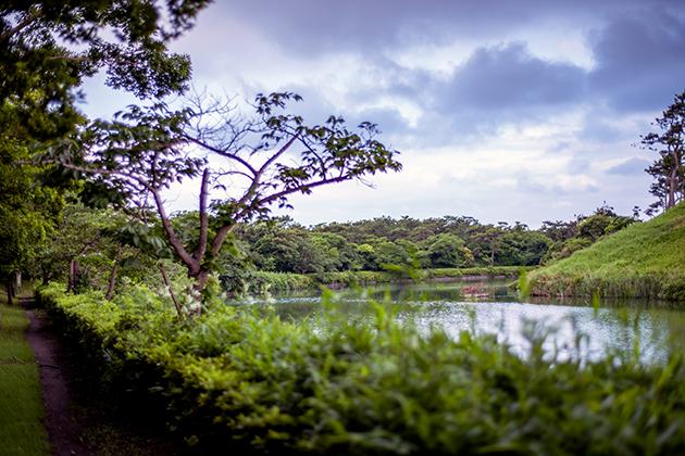 富津公園40