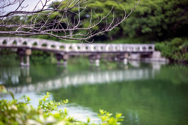 富津公園50