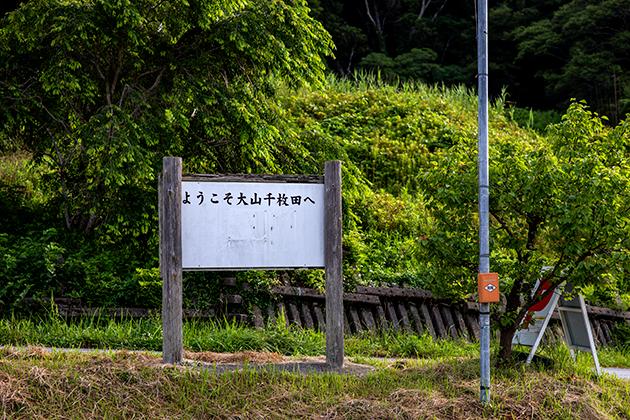 大山千枚田64
